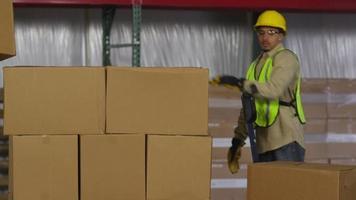 industriearbeiders stapelen dozen in verzendmagazijn video