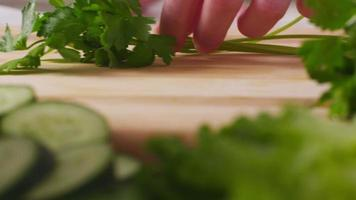 hugga italiensk persilja, närbild video
