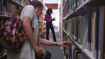 College-Studenten in der Bibliothek auf der Suche nach Büchern video