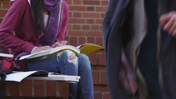 College-Student, der im Freien mit Laptop-Computer studiert video