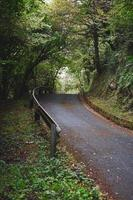 road in the mountain in spring season photo