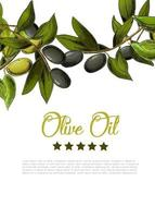 Vector background with border of black and green olives