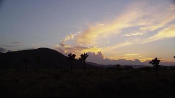 travelling du désert californien au coucher du soleil video