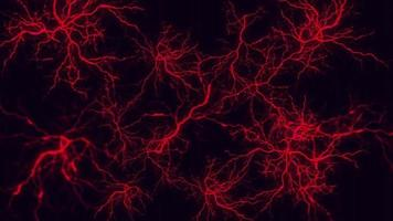 Capillary structure or arterial cells within the human body video