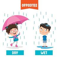 Opposite Adjectives With Cartoon Drawings vector
