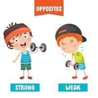 adjetivos opuestos con dibujos animados vector