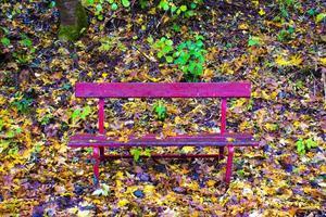 banco rojo con hojas foto