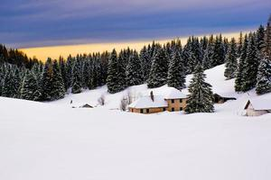 cabaña y paisaje de pinos nevados foto