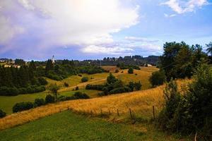 colinas y arboles foto