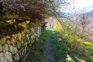 Path with stone wall photo