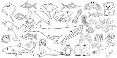 Big set vector cartoon outline isolated sea ocean north animals Doodle whale dolphin shark stingray jellyfish fish crab king Penguin chick octopus fur seal polar bear cub for coloring book