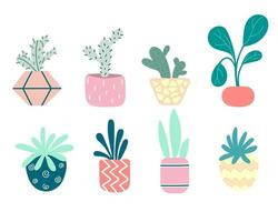 Collection of home indoor plants in pots. Cacti, rubber plants, roses, bonsai. Set of decorative flowers. Gardening. Colorful flower pots isolated on a white background. Flat vector illustration