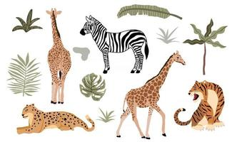 Safari animal object collection with leopard vector