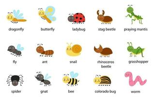Set of cute cartoon insects with names Vector illustrations