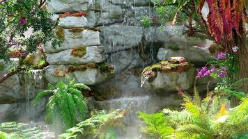 piantare alberi e fiori che sbocciano e foglie verdi gialle e sfocatura blu sullo sfondo della cascata in estate video
