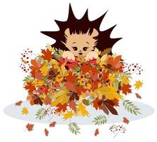 Vector image of a hedgehog in a pile of autumn foliage