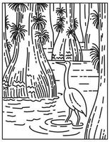Great Egret Wading in Mangrove and Sawgrass Marsh in Everglades National Park Located in Florida United States Mono Line or Monoline Black and White Line Art vector