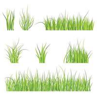 Set of green grass pattern vector