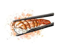 Gunkan sushi with shrimp from a splash of watercolor hand drawn sketch Vector illustration of paints