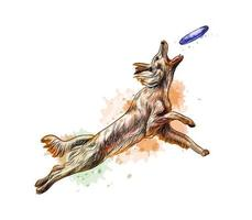 Perro atrapando disco volador de un toque de acuarela boceto dibujado a mano ilustración vectorial de pinturas vector