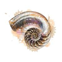 Nautilus shell section from a splash of watercolor hand drawn sketch Vector illustration of paints