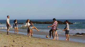 grupp ungdomar som går tillsammans längs stranden video