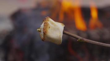 Roasted marshmallow by campfire. Shot on RED EPIC for high quality 4K, UHD, Ultra HD resolution. video
