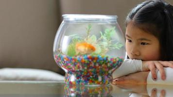 Young Asian girl looking at goldfish in bowl video