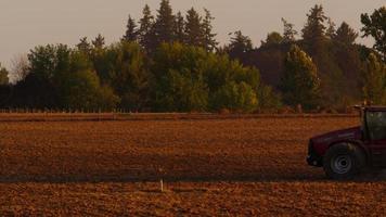 trator arando o campo ao pôr do sol. video