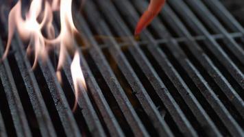 Garnalen vallen in slow motion op de grill, geschoten op phantom flex 4k video