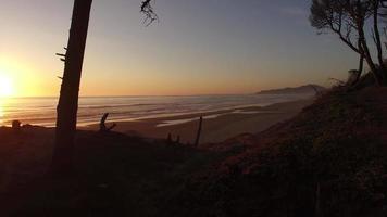 Aerial shot of Oregon coast at sunset video
