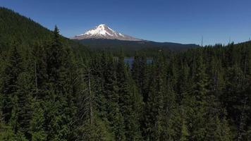 Aerial shot of Trillium Lake and Mt. Hood, Oregon video