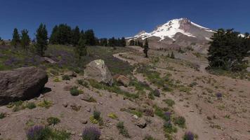 Aerial shot of Mt. Hood, Oregon video