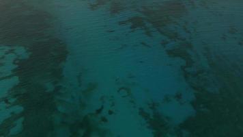 vue aérienne du récif océanique peu profond à cancun, mexique video