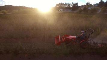 Agricultor cortando cultivos polvorientos en el tractor video