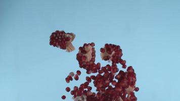 Pomegranate seeds flying in slow motion, shot with Phantom Flex 4K at 1000 frames per second video