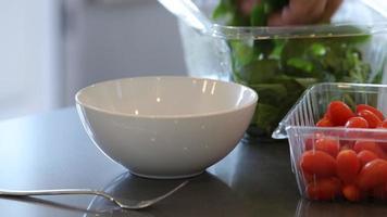 haciendo una ensalada saludable para el almuerzo video