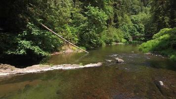 Flying over a creek with bridge, Oregon, USA video