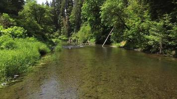 Aerial view of creek in Oregon, USA video