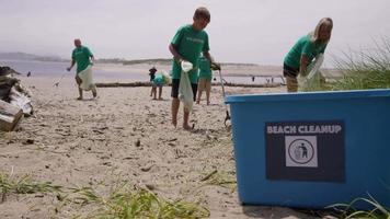 grupo de voluntários limpando praia video