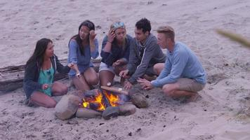 Group of friends at beach hanging out by campfire and roasting marshmallows video