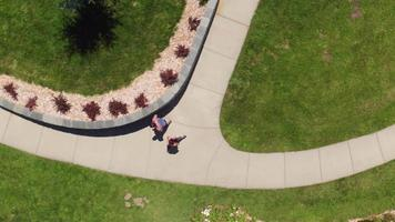 Overhead view of couple running at park video