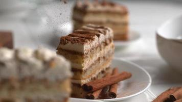 Cinnamon sprinkled onto Tiramisu cake in super slow motion, shot on Phantom Flex 4K video