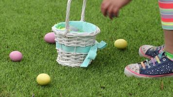 jovem pegando ovos de páscoa na grama e colocando-os na cesta video