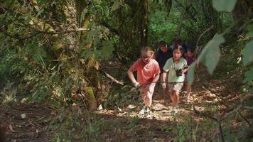 crianças no acampamento de verão indo em uma caminhada na natureza video