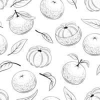 Seamless Pattern of Juicy Mandarins vector