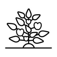 growth plant with apples line style icon vector