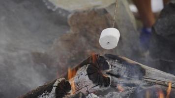 Closeup of marshmallows roasting on campfire video