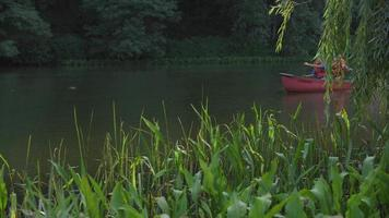 Kids at summer camp paddling canoe in pond video