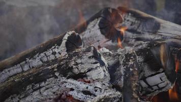 Closeup of campfire burning at summer camp video